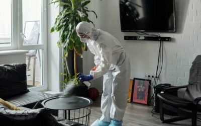 7 Reasons Why You Should Disinfect Your Home Or Business Regularly